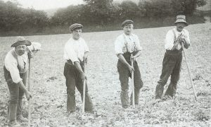 Victorian Farmers